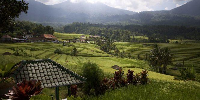 Llamar de PERÚ a INDONESIA